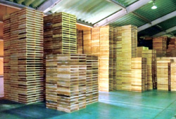 積まれている木製パレット